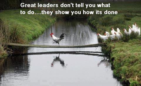 #1 Leaders