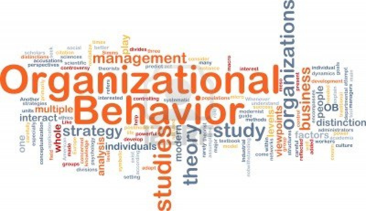 organzational behavior Organizational behavior management (obm) applies behavioral principles to people in business, industry, government and human service settings.