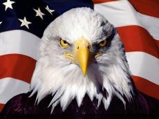 american-symbols-screensaver