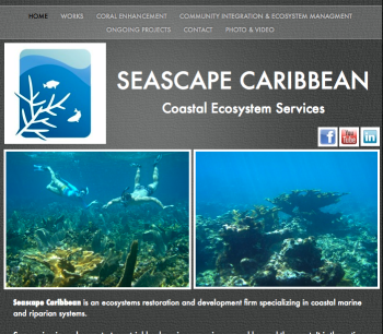 Seascape-Caribbean