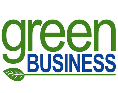 An examination of green decisions of managers in business organizations
