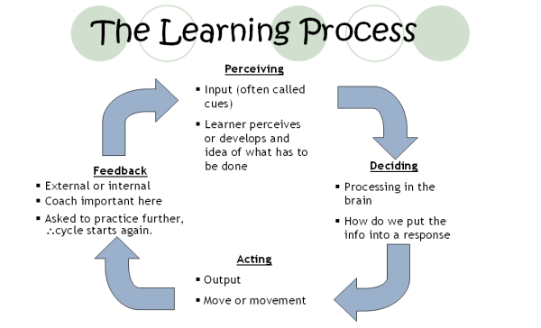 learning-process
