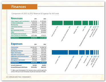 2011-annual-report-finances