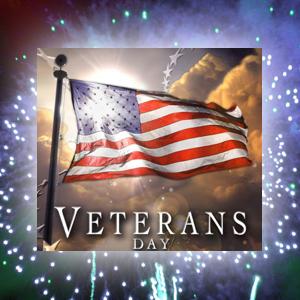 vet_day_fireworks
