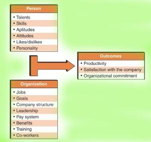 organizational fit model