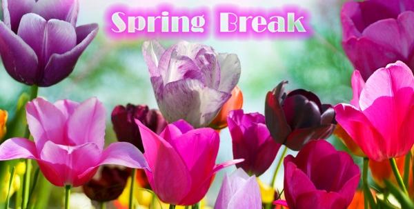 2-Wednesday Spring Break