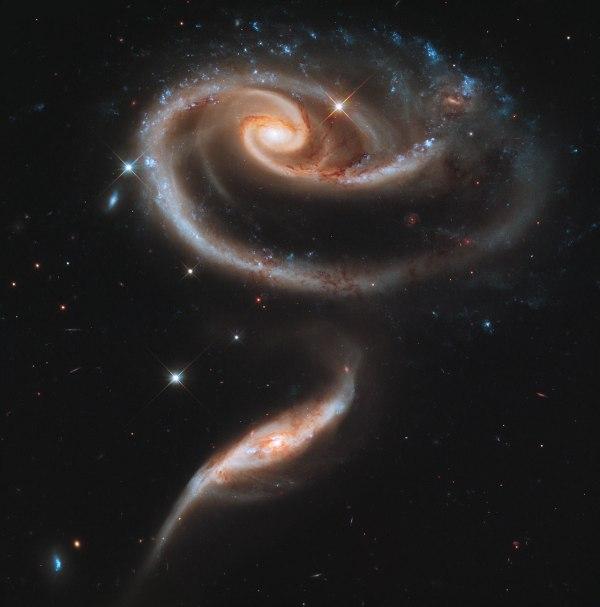 rose-de-galaxies