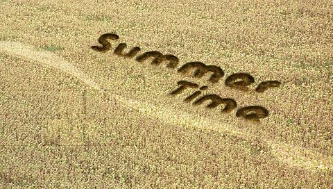 summertime-033