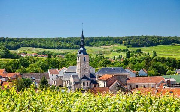 Champagne Marne